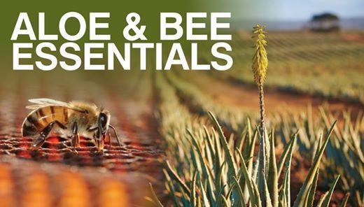 Aloe & Bee Essentials