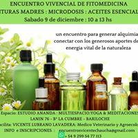 Fitomedicina - Encuentro Vivencial y Practico en Bariloche