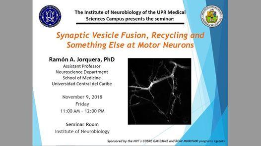Seminar Dr Ramon Jorquera At Institute Of Neurobiology San Juan