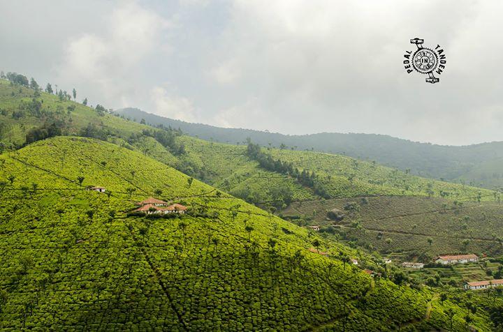 Misty Mountain Hop (cycling in the Nilgiris)