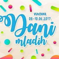 Dani mladih - Vukovar 2017.