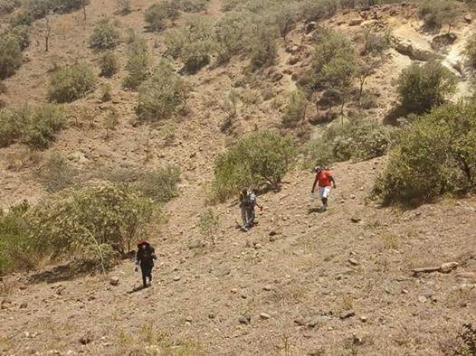 Mt Oloroka Olesekut Hike At Ksh.2550