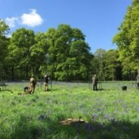 The Bluebell Shoot Clay Day