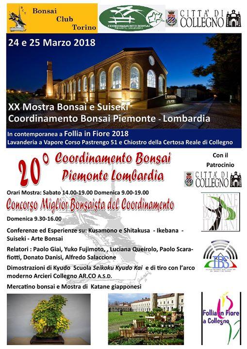 Mostra Coordinamento Bonsai Piemonte Lombardia At Lavanderia A