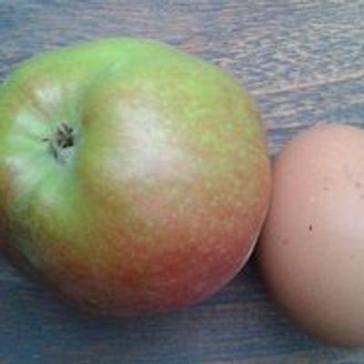 Stichting Appel&ei