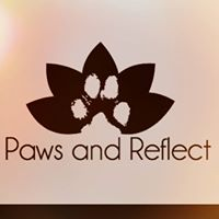 Paws And Reflect Yoga And Brunch Fundraiser