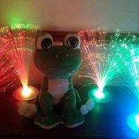 The Story Frog MariaTiddlers. Kilflynn