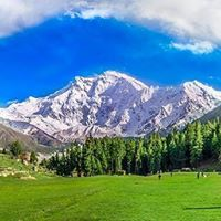 Fairy Meadows &amp Nangaparbat Base Camp.