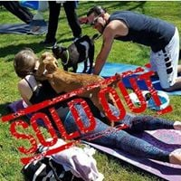 Mobile Baby Goat Yoga  Source Energy Studio Lakewood SOLD OUT