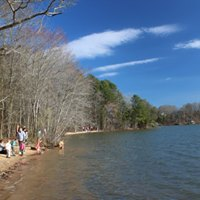 Wednesday Woodland Wellness Walk at RibbonWalk Nature Preserve