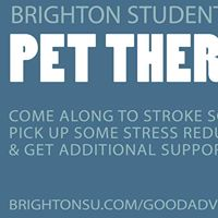 BSU Pet Therapy at Eastbourne