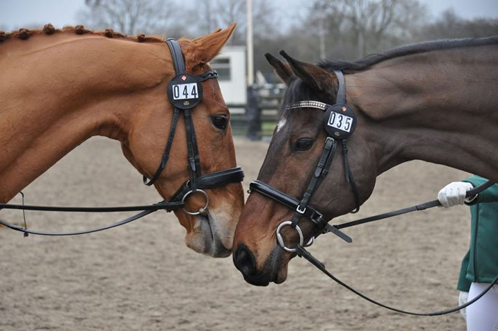 RoR Polework or Jump clinic with Andrew Bennie