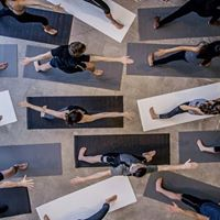 New Year 6 Wk Beginner Yoga Course