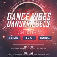 DANCE VIBES  Danskriebels