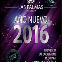 Fiesta de Ao Nuevo