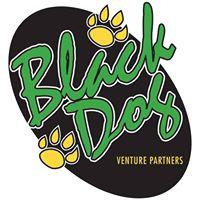Black Dog Venture Partners