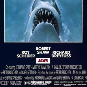 Jaws on the water - coming summer 2018