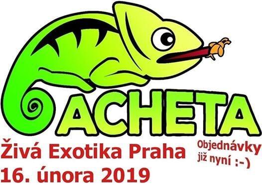 iv exotika Praha Holeovice 16. nora 2019