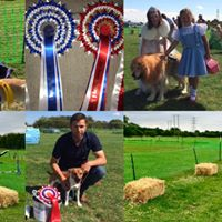Fun Dog Show Saturday 5th August 12pm Meadowcroft Dunswell HU60AG