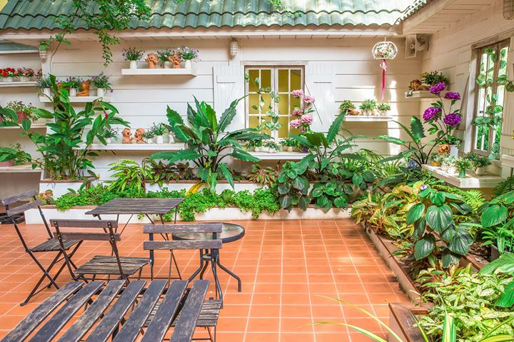Create A Tropical Paradise In Your Yard At Ted Lare Design Build