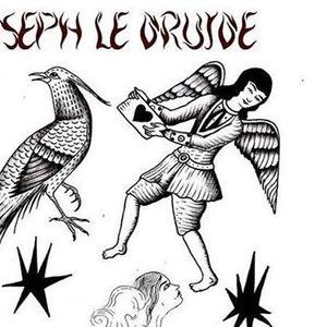 Joseph le Druide en guest