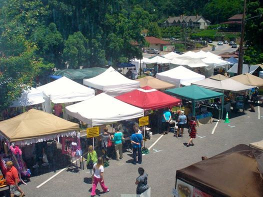 2019 Lake Lure Spring Arts & Crafts Festival