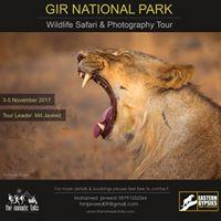 Gir wildlife photography trip