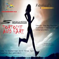 Tortoise and Hare Night Run 8 &amp 5km