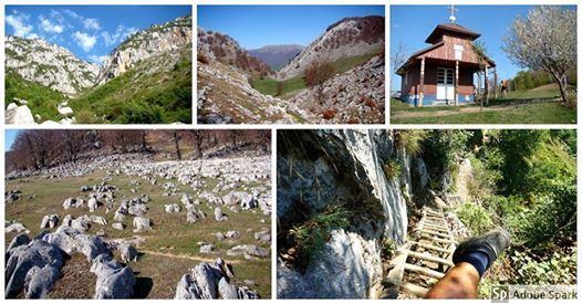 Munte i natur n Valea Cernei