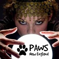 Events Amp Activities In Attleboro Discover Today