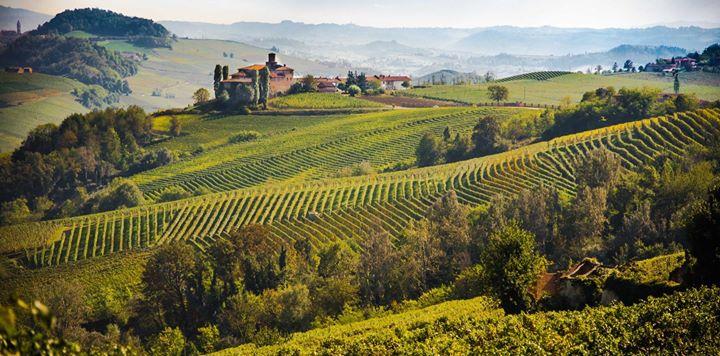 3 Giorni in Minibus Tour nelle Langhe Roero e Monferrato