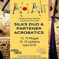 Workshop  Aerial Silks Duos &amp Partner Acrobatics