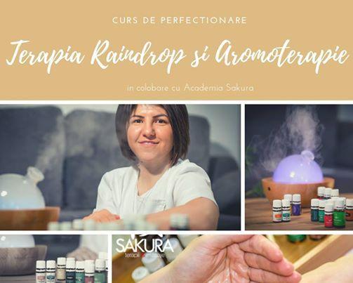 Curs de Aromoterapie si Raindrop