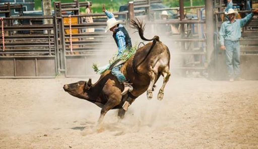 Mexican Rodeo at Arapahoe County Fair