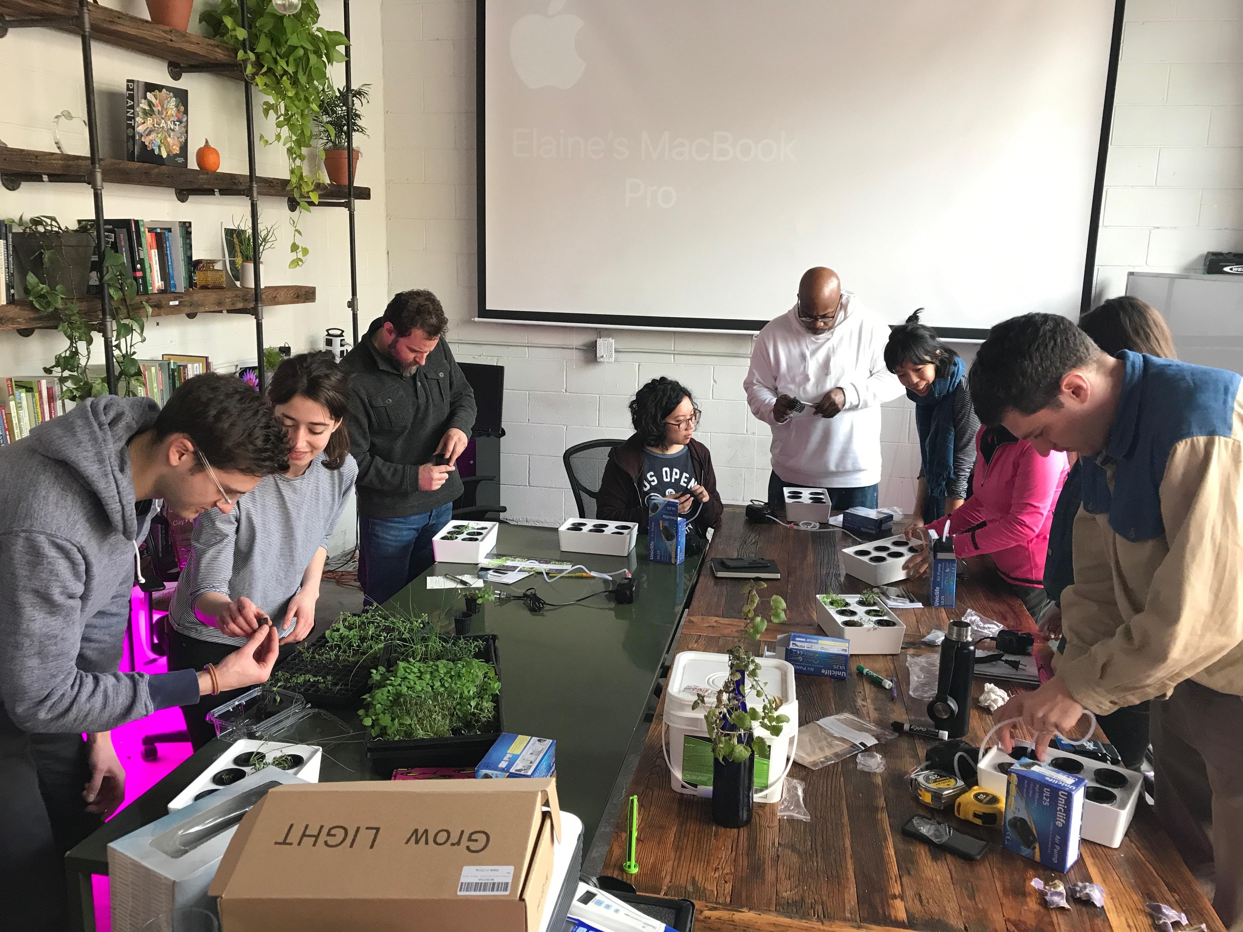 Farm Workshop Build Your Own Mini Hydroponic System