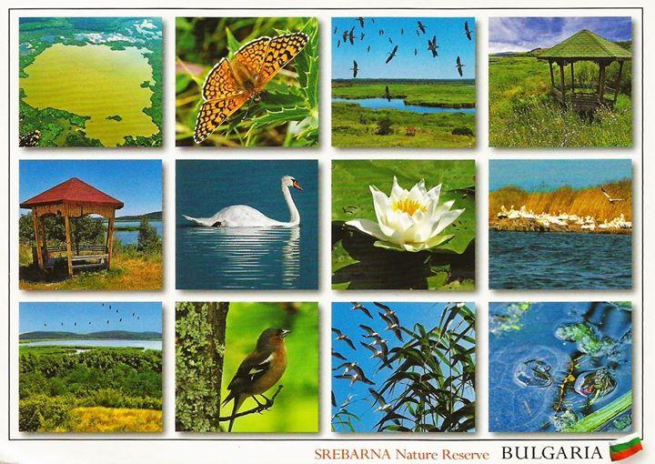 Excursie 1 zi Bulgaria Nikolovo - Sveshtari - Srebarna 90 lei