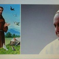 Os dois Franciscos