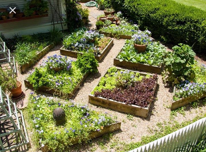 Growing and designing your herb garden at Aurora\'s Apothecary LLC ...
