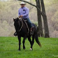 Horsemanship and Obstacle Clinic