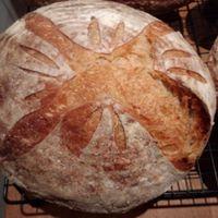 Next Baking Day