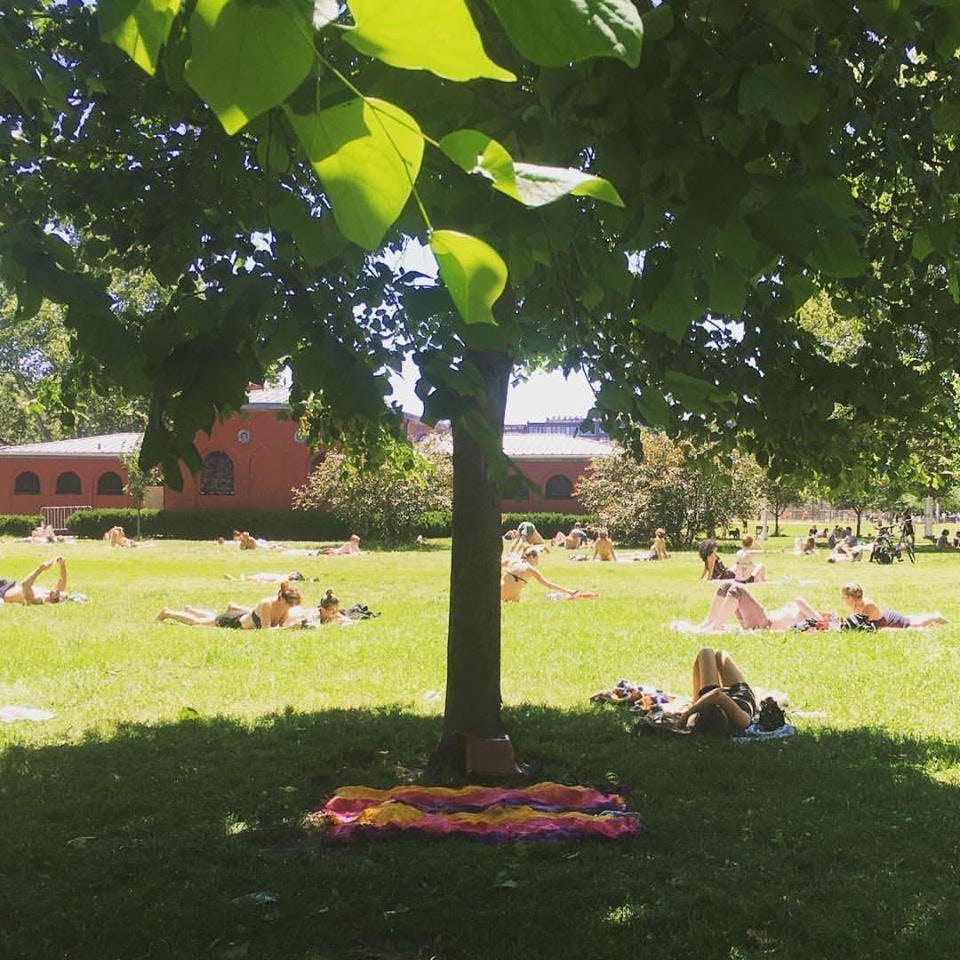 Summer Solstice Meditation in McCarren Park
