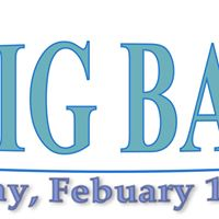 The Big Bazaar 2016