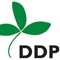 Democracy Development Program NPC