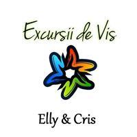 Excursii de Vis Eli & Cris