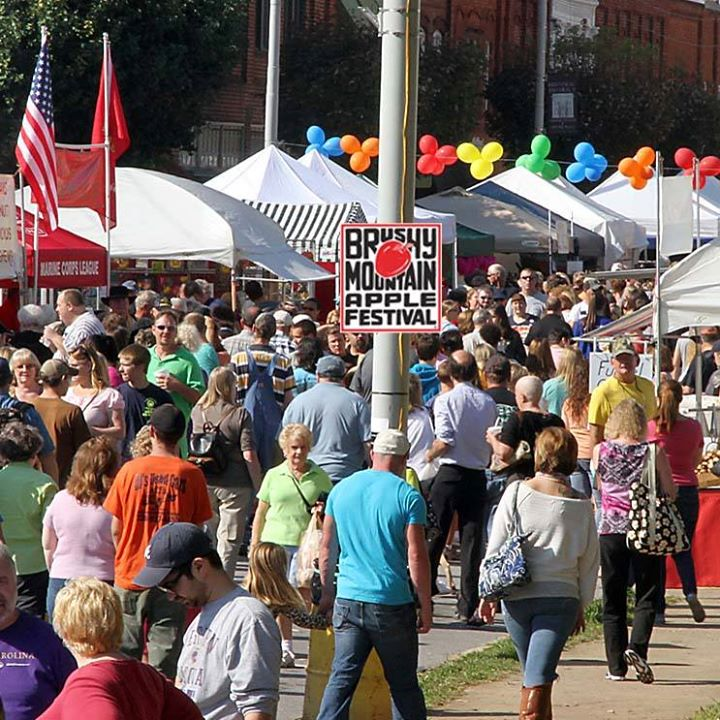 Brushy mountain apple festival 2017 at downtown north for Craft shows in nc 2017