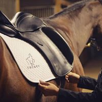 Park Equine Saddle Fitting Clinic with Gene Freeze