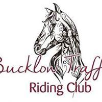 Bucklow Trafford Riding Club show