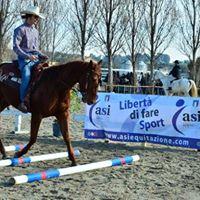 Corso Formazione Tecnico di Base Discipline Equestri Integrate
