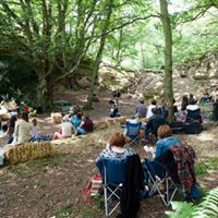 Woodland Session - Live acoustic music
