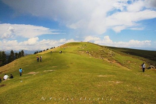 1 Day Trip to Toli Peer & Banjosa lake
